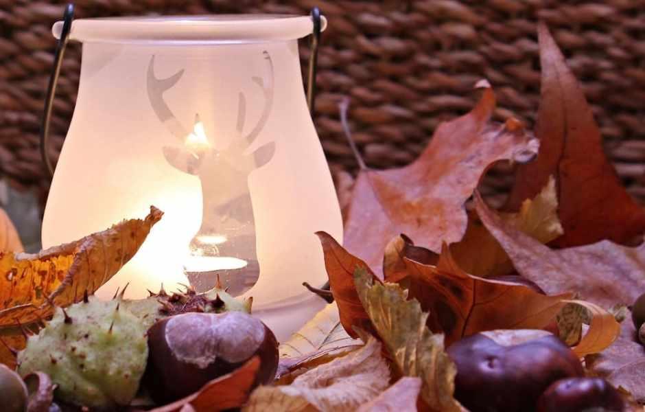 Decorazioni di Natale con le foglie del giardino