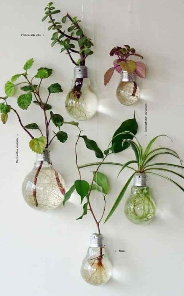 Anche una vecchia lampadina può tornare a nuova vita, soprattutto se avete molte piante di piccole dimensioni a cui proprio non riuscite a trovare la giusta dimora
