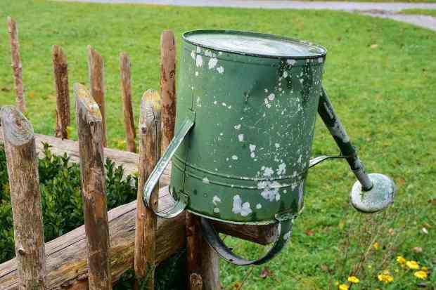 l'annaffiatoio è uno strumento indispensabile nell'orto e in giardino