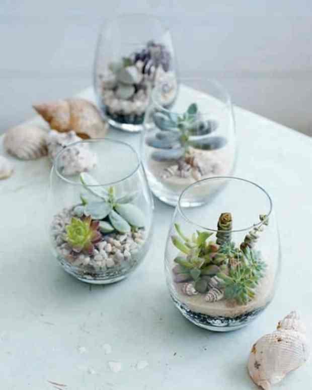 bicchieri da tavola trasformati in vasi per le piante grasse