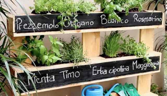 Coltivare l\'orto senza balcone e senza terrazzo | Guida Giardino