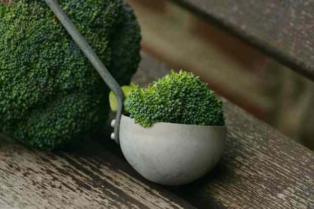 I broccoli crescono bene in un terreno che sia ben concimato e hanno bisogno di tanto spazio