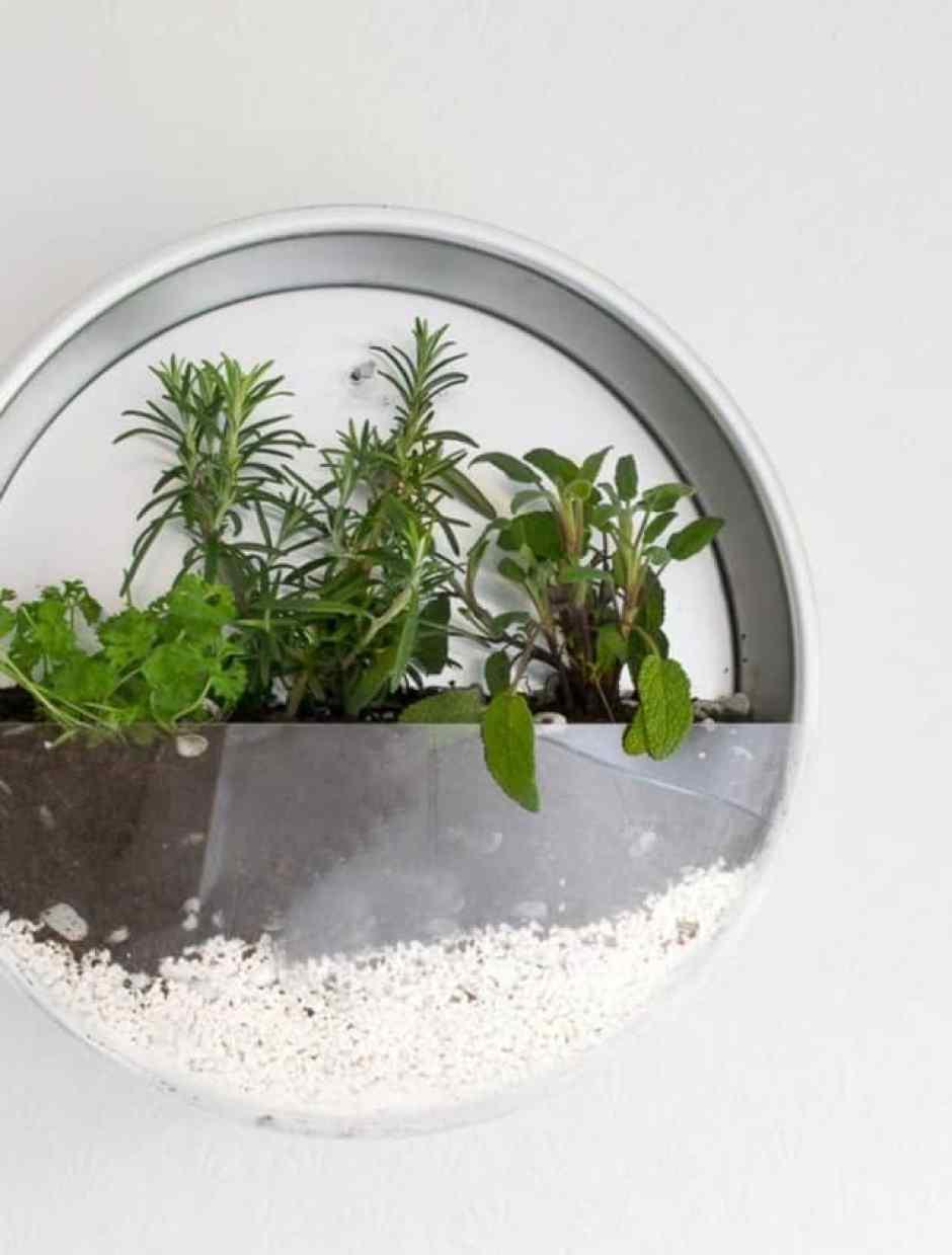 Da teglia a contenitore per le piante