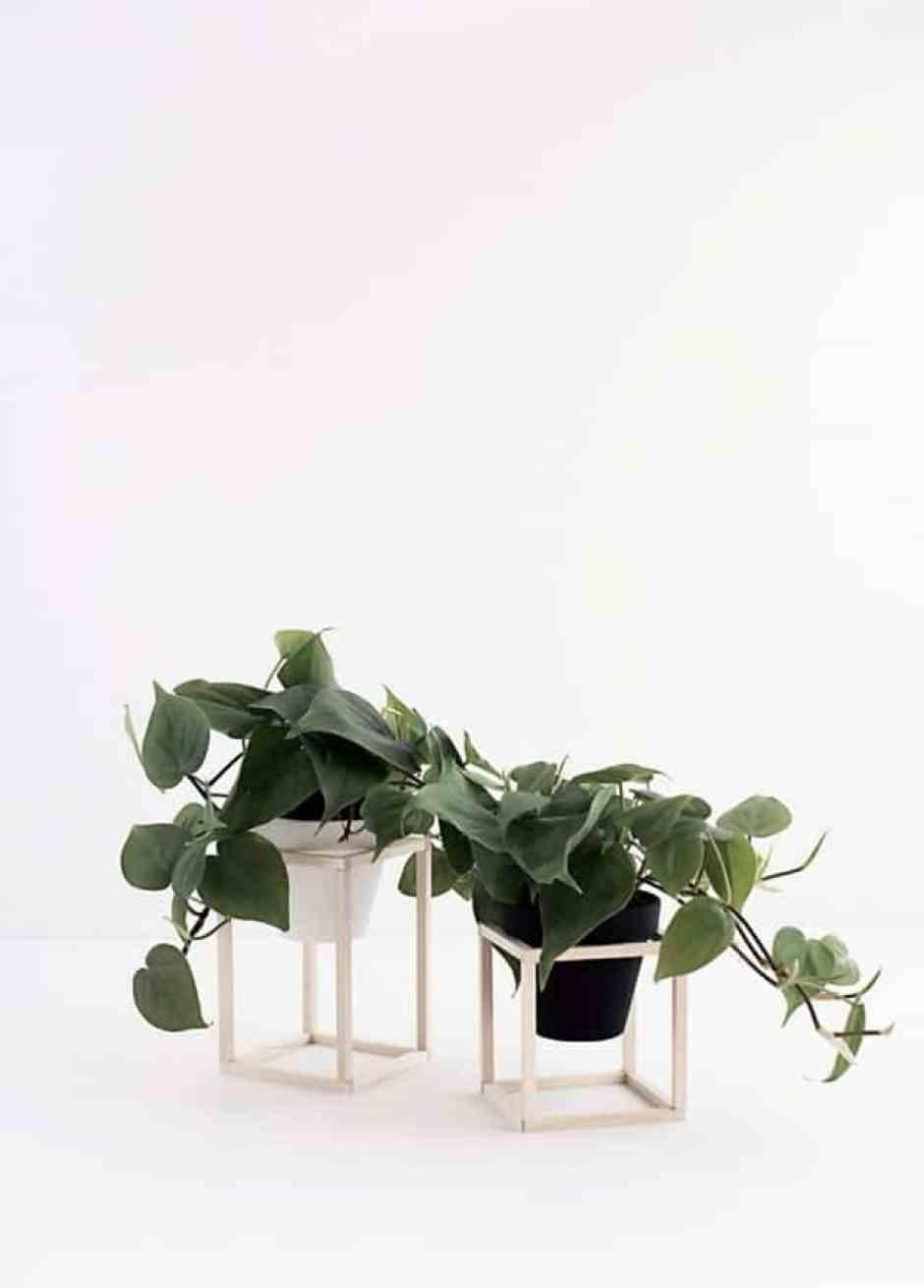 Stand in stile minimal per piante d'appartamento