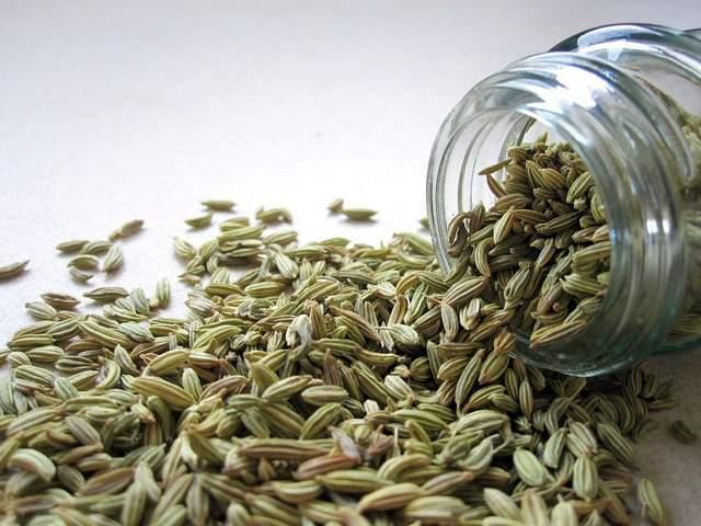 Tisane per l'inverno: le migliori erbe officinali