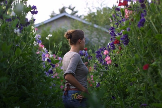 Potatura delle piante annuali, indispensabile per garantire loro una buon crescita.