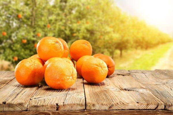 Il tarocco giallo, un tipo di arancia tipica della Sicilia.