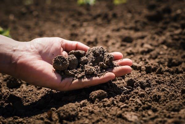 Tastare il terreno a mani nude è molto importante per conoscerne le caratteristiche.