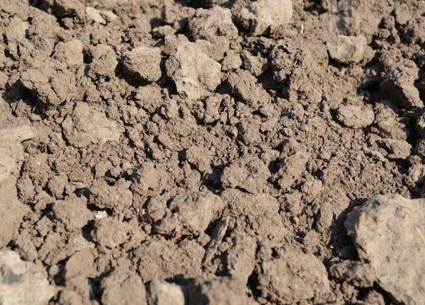 Terreno arido, una tipologia molto diffusa tra quelli più difficili da coltivare.