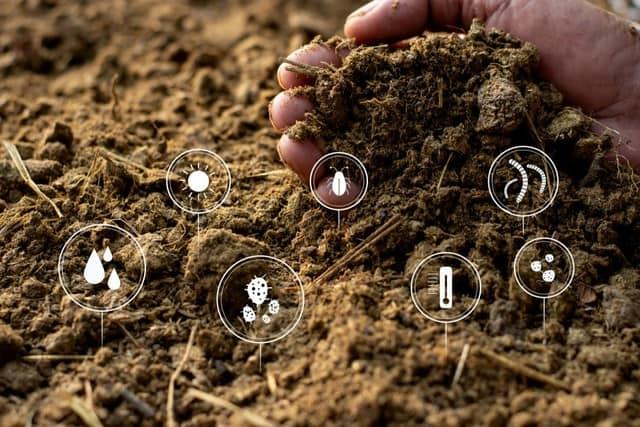 La concimazione: conoscere il terreno per fornirgli il giusto nutrimento