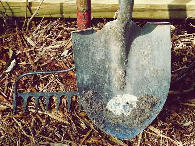 La pala si utilizza per trapiantare le piantine o per rimuovere piccole quantità di terra dal terreno
