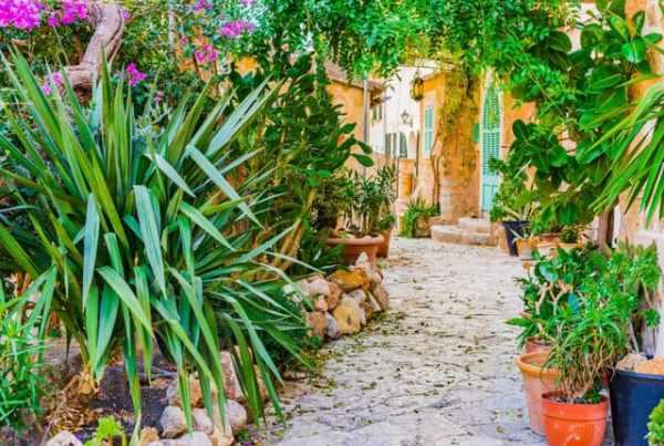 il terrazzo ispirato al giardino mediterraneo
