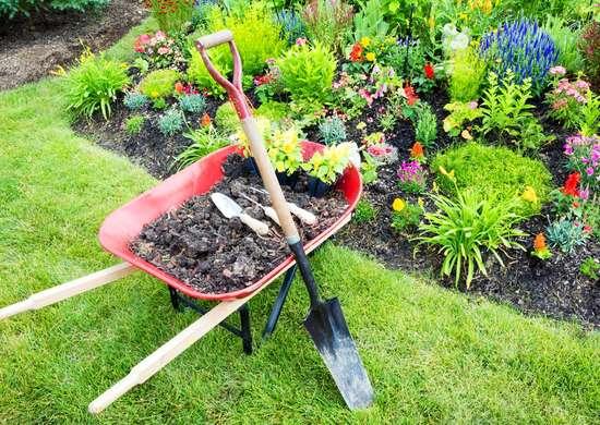 Vanga e carriola, due strumenti molto utili per fare giardinaggio