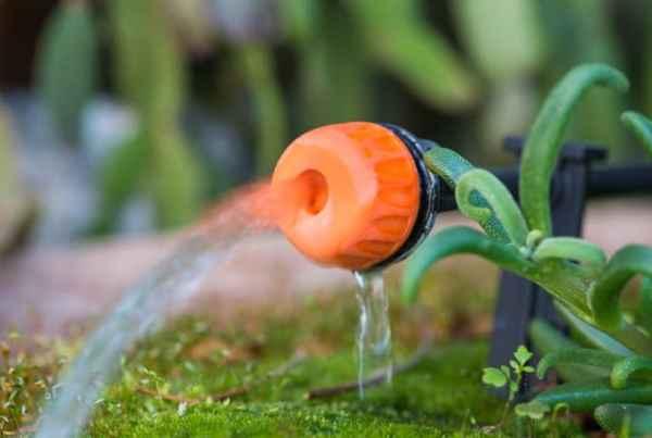 ssistema di irrigazione automatico per bagnare le piante durante le vacanze