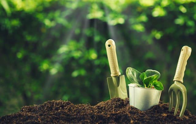 idee regalo per amanti del giardinaggio