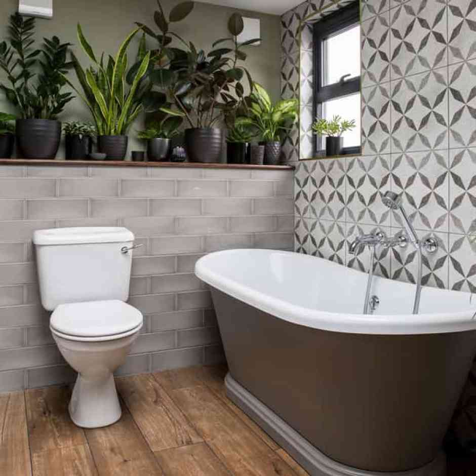 Piante di piccole dimensioni per il bagno