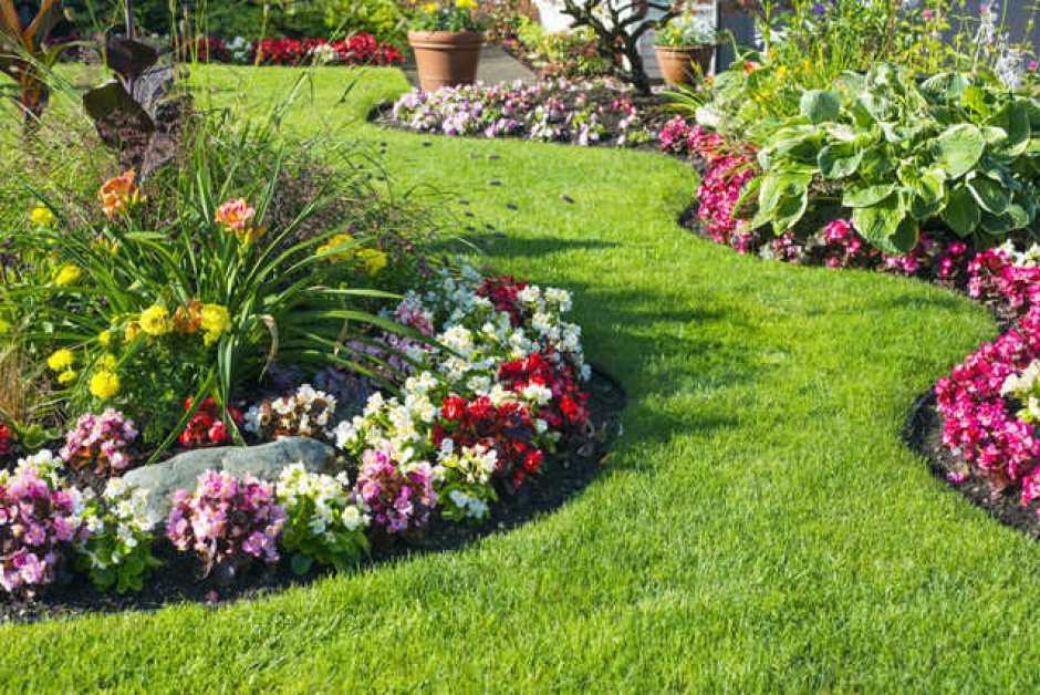 cura del giardino di casa