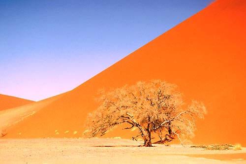 guide de voyage namibie botswana
