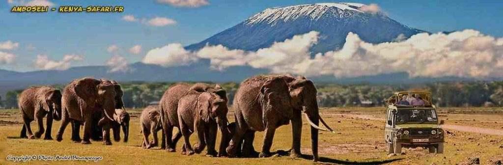 Bonjour Amboseli - Mon concept de guide de voyage safari en Afrique
