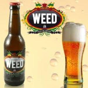 bièreauchanvre