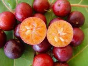 prune d'Inde