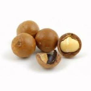 Noix de macadamia1