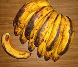lacatan.banane