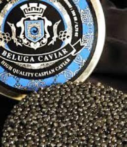 béluga