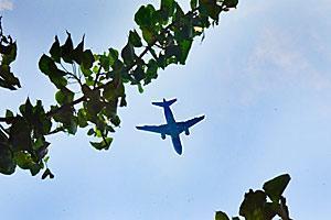 Vol de dernière minute pour la Thailande