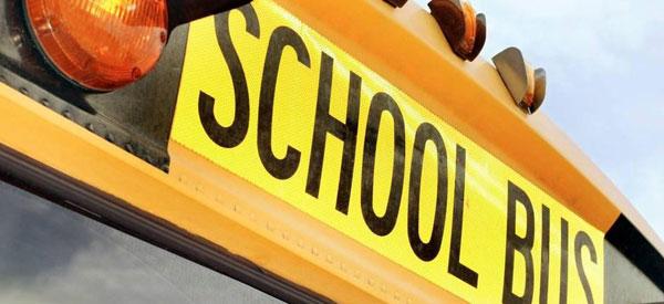 Skolebus School Bus