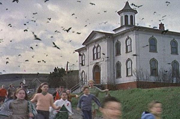 Skole Hitchcock gyser The Birds