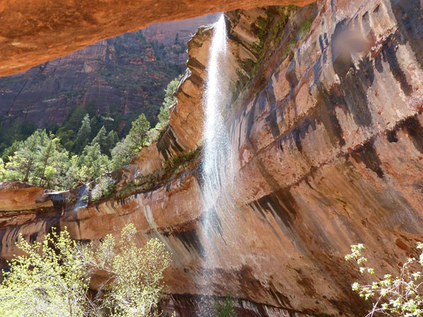 Zion favorit nationalpark USA