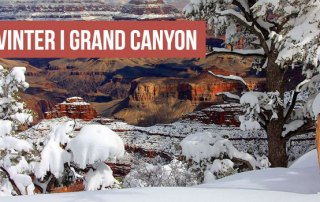 Vinter Grand Canyon - Arizona Nationalpark