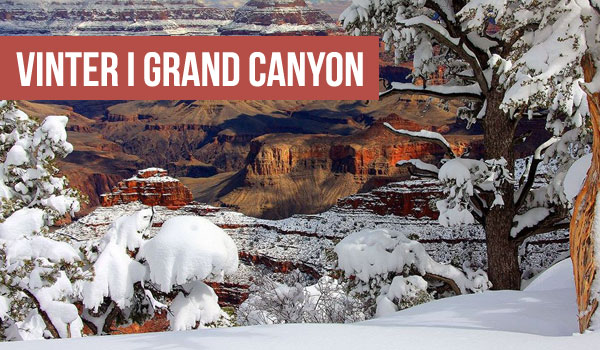 Vinter Grand Canyon - Arizona Nationalpark