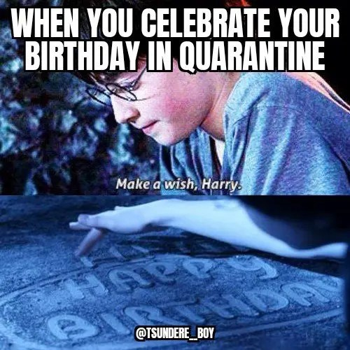17 Best Happy 21st Birthday Meme Images Birthday Meme 21st
