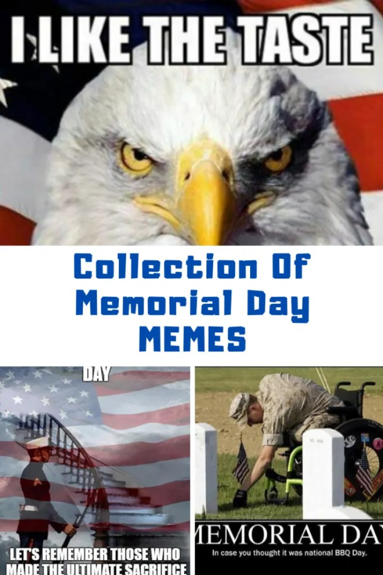 Collection Of Memorial Day Memes To Share on Facebook