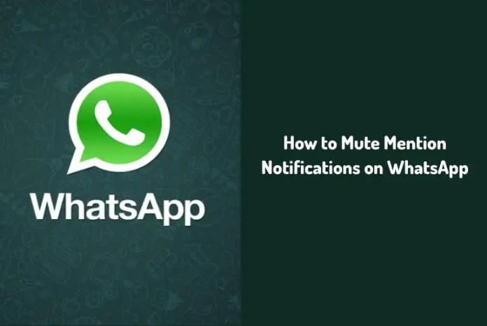Mute Mention Notifications on WhatsApp