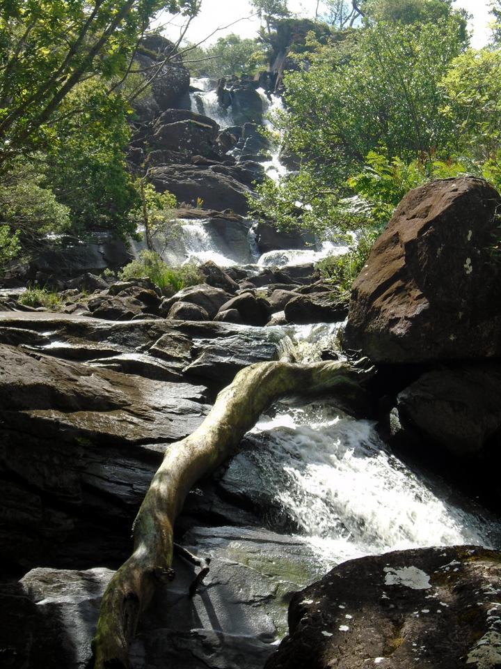 Derrycunnihy cascade DSC00844