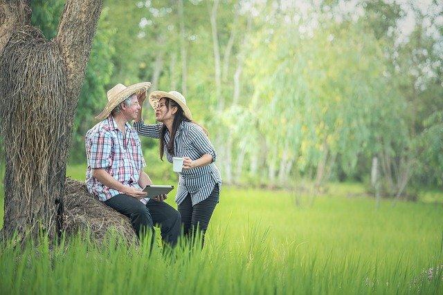Partir vivre à la campagne: est-ce vraiment la solution idéale?