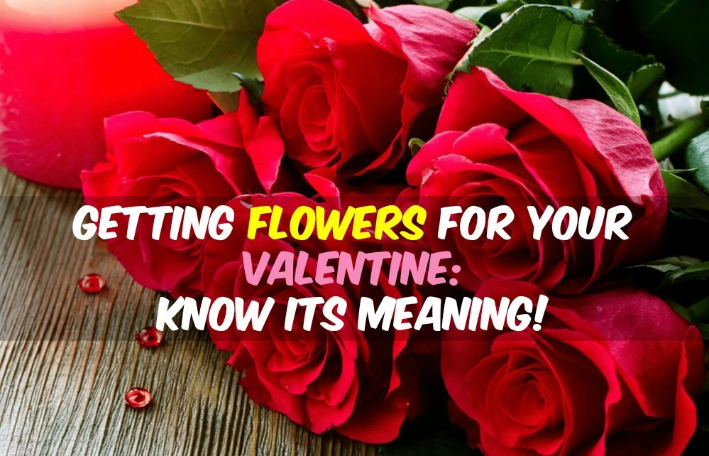 valentines-day-flower-meaning