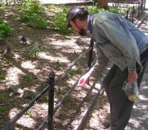 Ingo Swann feeding squirrel and pigeons