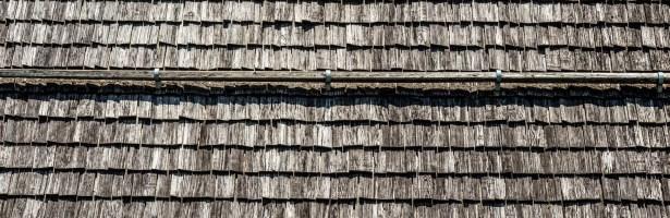VAL DI RABBI | Identità, luoghi e natura