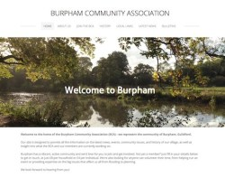 BCA_website