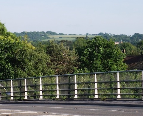 Merrow Landing Ground (highest central field) from Clay Lane bridge over the A3 at Burpham.
