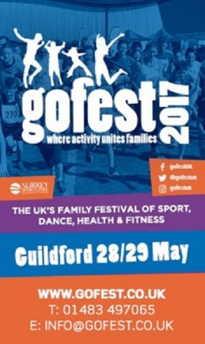 gofest 2017 advert 3