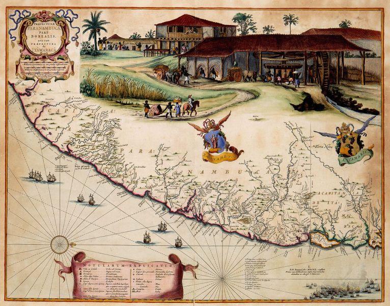 Comment choisir un archet - carte du pernambouc
