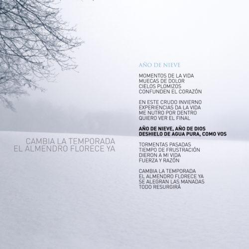 Invierno 7