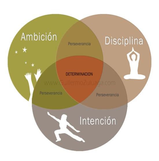 La determinacion es la suma de intuicion ambicion y disciplina - Guillermo Zuluaga copy