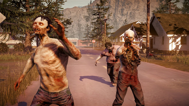 state of decay 1j