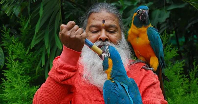 Fotos, Curiosidades, Comunicação, Jornalismo, Marketing, Propaganda, Mídia Interessante Dr-Swamiji-feeding-a-parrot_tcm25-477001 O maior aviário do mundo - O aviário mágico Cotidiano Curiosidades  maior aviário do mundo